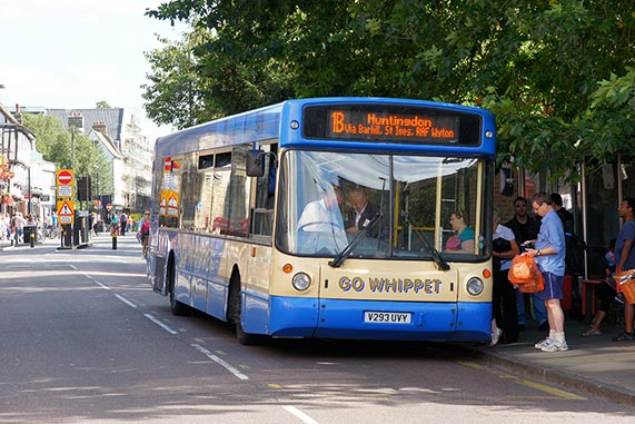 Whippet-bus